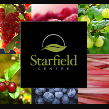 Starfield Centre